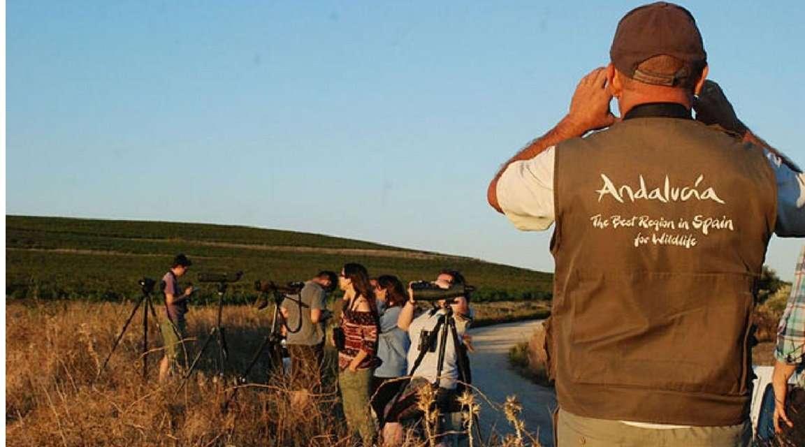 La Consejería responsable de Turismo, a través de Turismo Andaluz, participa en Global Birding Weekend.