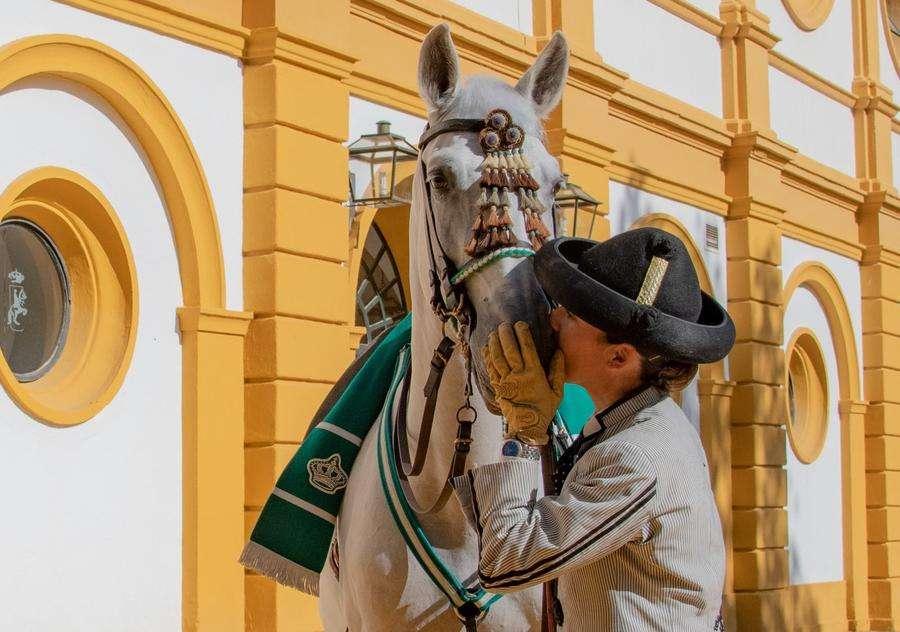La Real Escuela Andaluza del Arte Ecuestre de Jerez es galardonada en la X edición de los Premios AFA 2020 La Real Escuela nace con vocación de institución permanente para la educación, difusión y conservación de la historia y arte ecuestres en Andalucía, erigiéndose en vehículo cultural y social del Patrimonio Ecuestre de Andalucía.