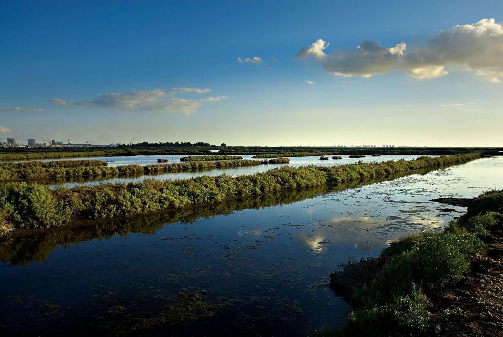 El proyecto Biomic analiza los principales indicadores del estado ecológico del medioambiente costero para elaborar una estrategia común de preservación.